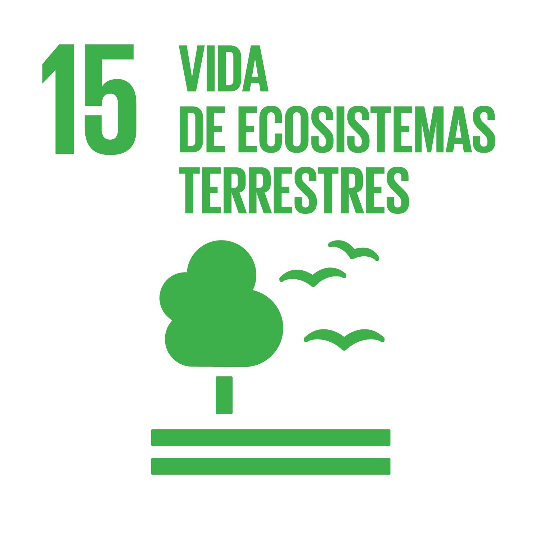 Objetivo 15: Vida de ecosistemas terrestres