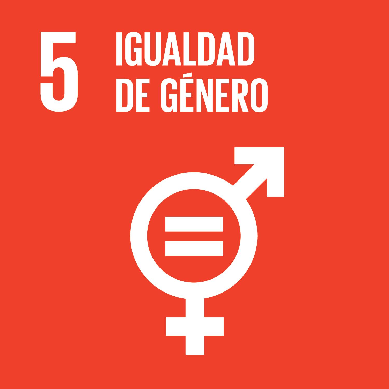 5 Igualdad de Género