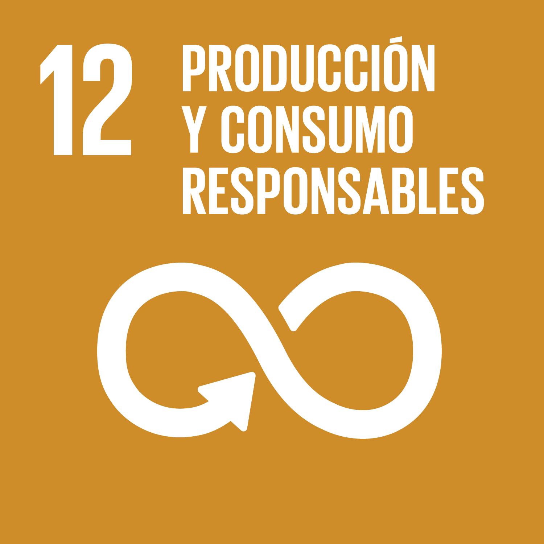 12 Producción y consumo responsables