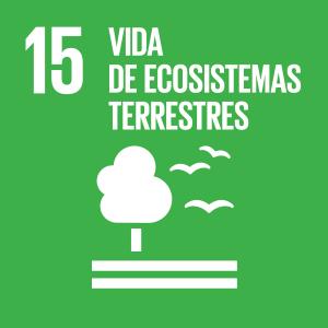 Objectiu 15: Vida de ecosistemes terrestres