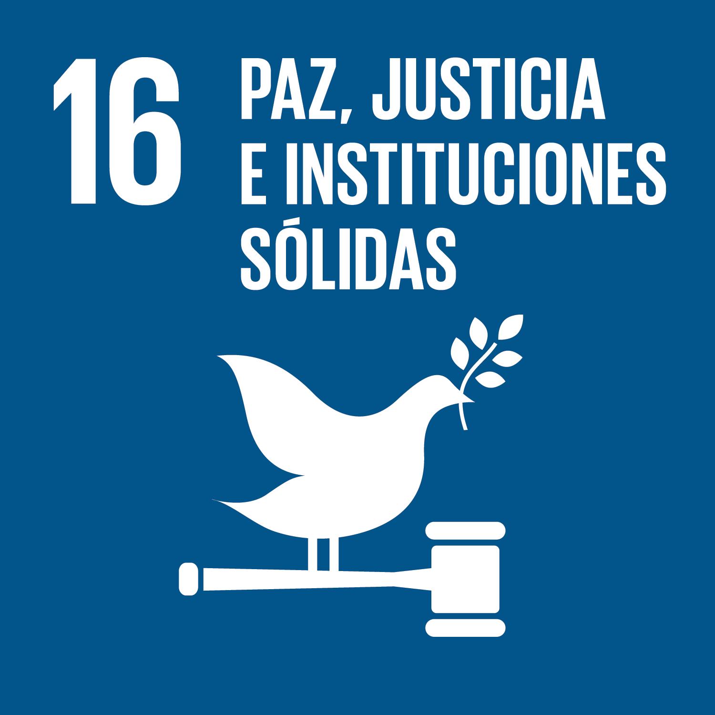 16 Paz, justicia e instituciones sólidas