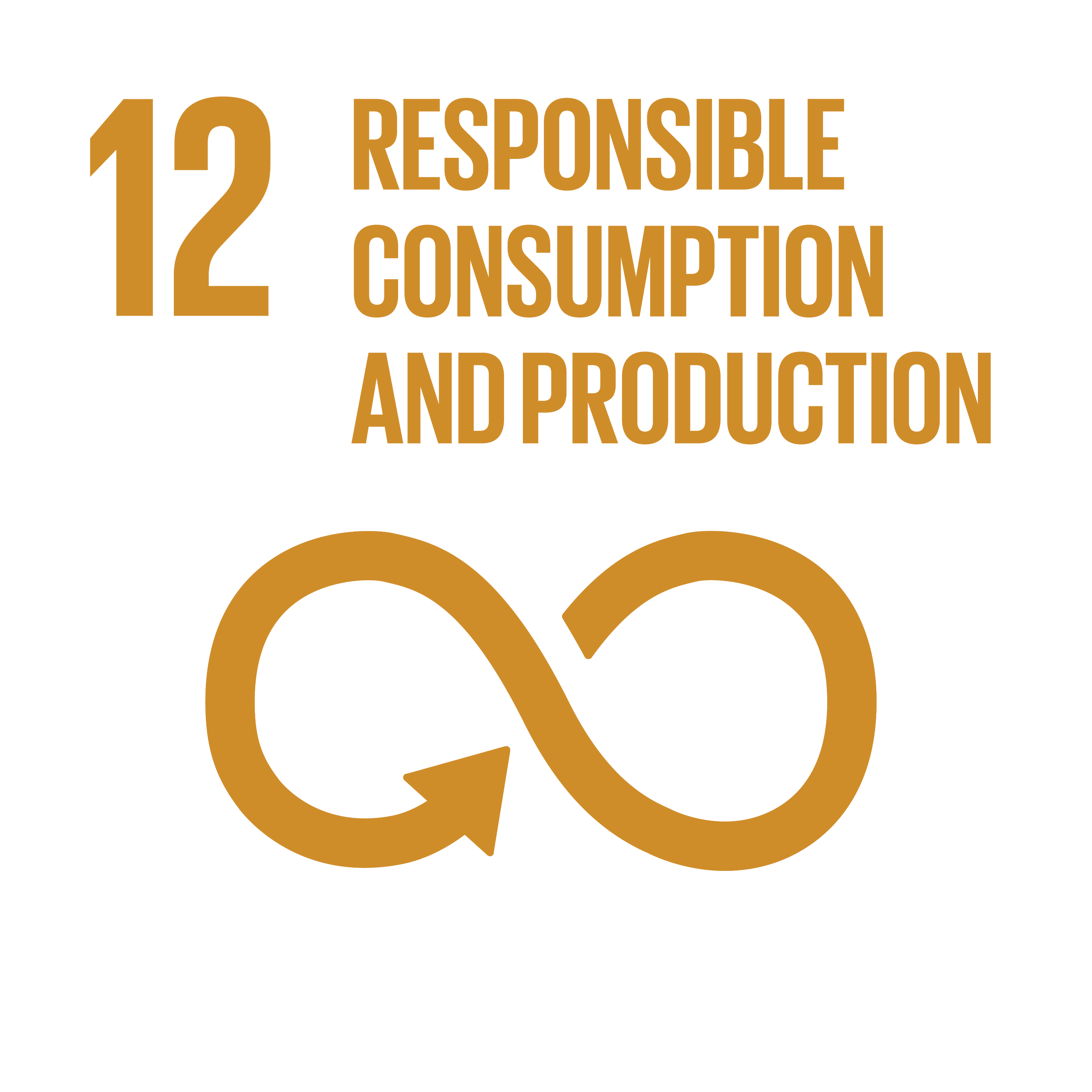Sustainable Development Goals 12 responsible consumption production
