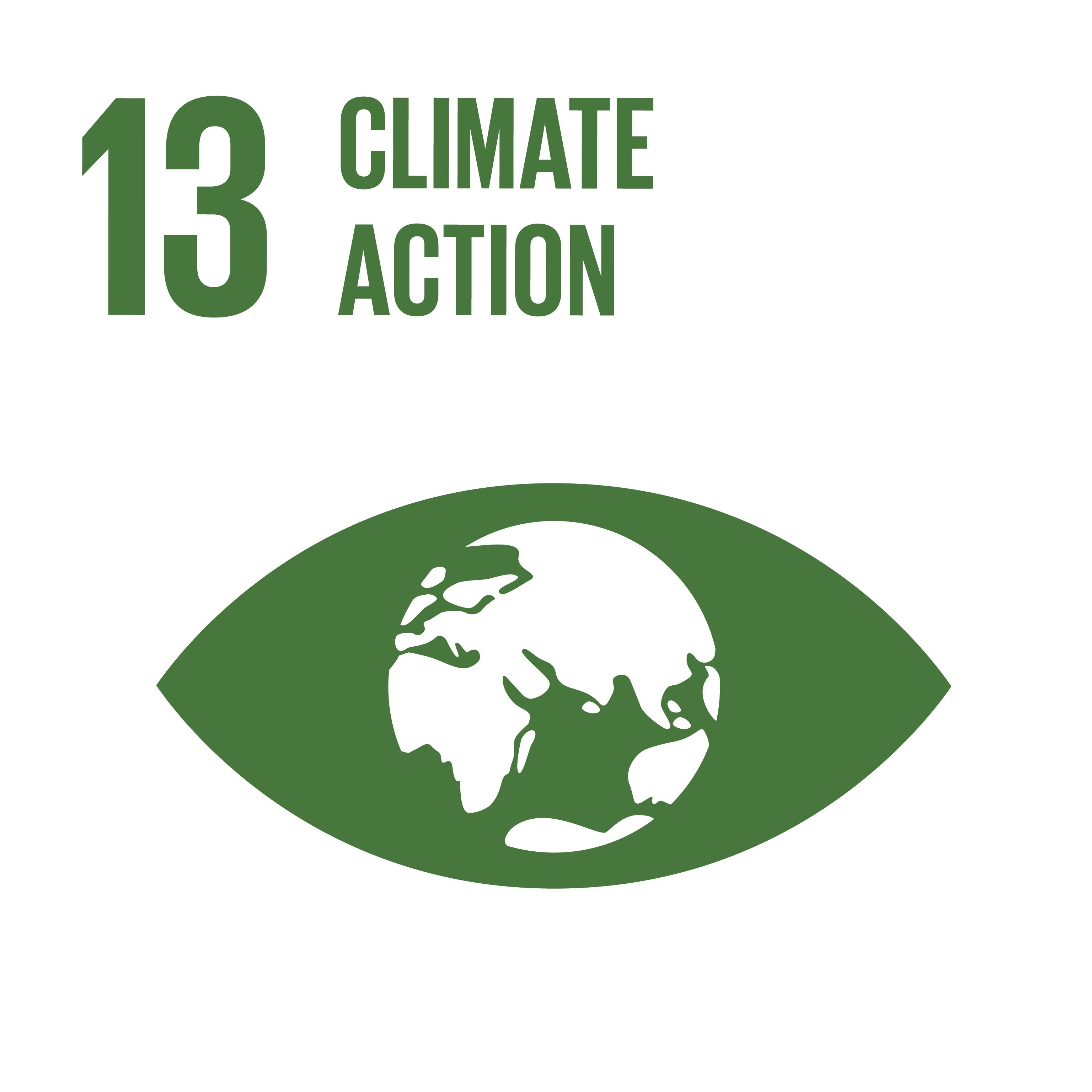 Sustainable Development Goals 13 climate action